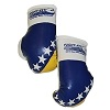 FIGHT-FIT - Mini Boxhandschuhe / Bosnien